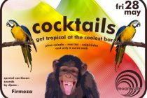 get tropical ! it's cocktail time ! Στο Moonwalk