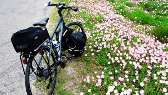 Ανοιξιάτικες ποδηλατικές εξορμήσεις