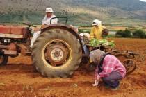 Έκπτωση φόρου για τους κατά κύριο επάγγελμα αγρότες