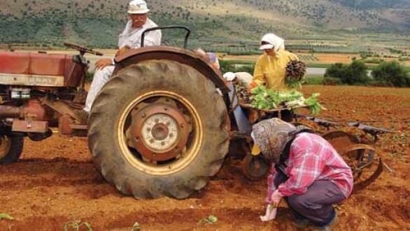 Με πλαστικό χρήμα το αφορολόγητο και για τους αγρότες