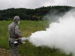 Η καθυστερημένη απάντηση της Αντιπεριφερειάρχη Έβρου για τα κουνούπια