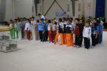 Σημαντικές διακρίσεις για τους μικρούς αθλητές του Α.Ο.Ε.Γ.Α. στο 9ο διεθνές τουρνουά ενόργανης γυμναστικής