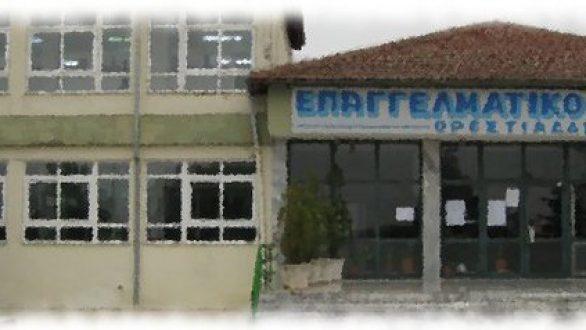 Συμμετοχή του 1ου ΕΠΑ.Λ Ορεστιάδαςσε διετές Ευρωπαϊκό πρόγραμμα Erasmus+