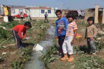 Ζητούνται Δάσκαλοι για την εκπαίδευση των παιδιών Ρομά σε Μακεδονία και Θράκη