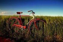 Tour de περίχωρα διοργανώνουν οι ποδηλάτες Αλεξανδρούπολης