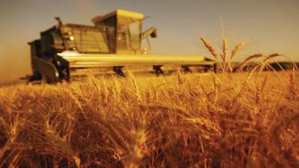 Υποβολή Δηλώσεων Καλλιέργειας στον ΕΛ.Γ.Α. μέχρι 17.10.2011