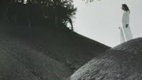 Πρόγραμμα Κινηματογραφικών Προβολών- Ιούλιος- Γνάφαλα 2010