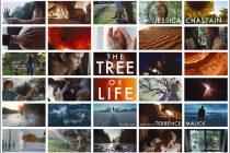 Στο δέντρο της ζωής σκαρφαλώνει ο Brad Pitt… The tree of life στην Κ.Λ.Α.