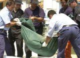Σοροί έξι νεαρών μεταναστών εντοπίστηκαν σε περιοχές του Έβρου