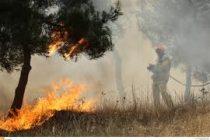 Δήμος Σαμοθράκης: Προσλήψεις εφτά ατόμων για την πυρασφάλεια