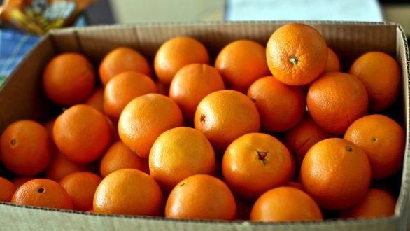 Το κόλπο με το πορτοκάλι στον φούρνο της κουζίνας που λίγοι γνωρίζουν