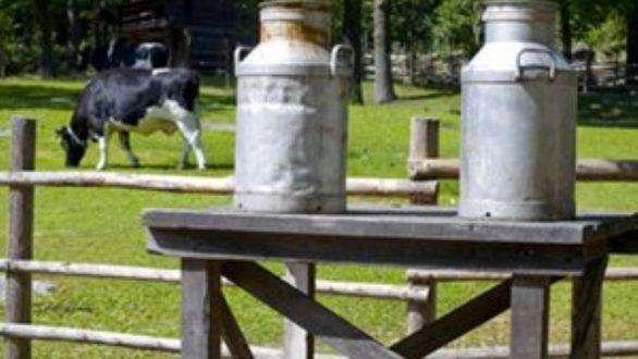 Διορθώσεις στον τρόπο απόδοσης των αποζημιώσεων τους προτείνουν οι κτηνοτρόφοι