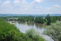 Την προσοχή εφιστά η Περιφέρεια λόγω της ανεύρεσης νεκρών ψαριών στον ποταμό Έβρο