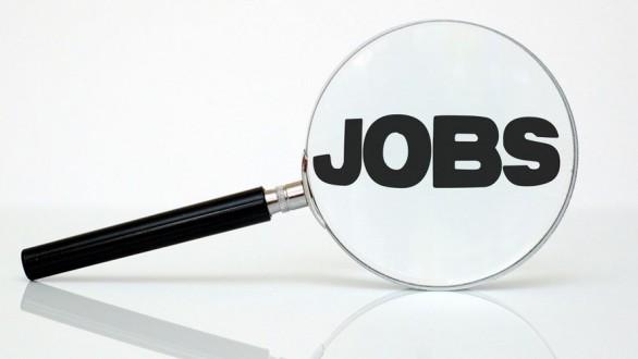 6 θέσεις εργασίας στο Δήμο Αλεξανδρούπολης