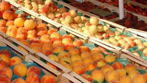 Αλεξανδρούπολη:  Διανομή φρούτων από το πολυκοινωνικό παντοπωλείο