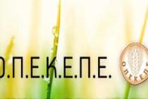 ΟΠΕΚΕΠΕ: Εβδομάδα πληρωμών βασικής ενίσχυσης, εξισωτικής και πρασινίσματος