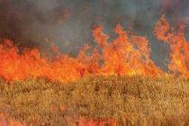 Οδηγίες του Δήμου Αλεξανδρούπολης λόγω πολύ υψηλού κινδύνου πυρκαγιάς στην περιοχή