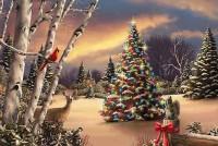 Φωταγώγηση Χριστουγεννιάτικου Δέντρου στους Ασβεστάδες