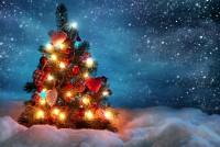 «Χριστουγεννιάτικη Γειτονιά» και Φωταγώγηση Χριστουγεννιάτικου Δέντρου στις Φέρες