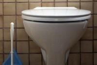 Καθαρίστε την τουαλέτα με γιαούρτι!