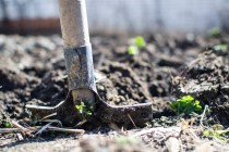 Έρχονται κατασχέσεις για οφειλές αγροτών από 500 ευρώ και άνω