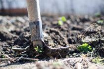 Κάλεσμα προς τους βουλευτές του νομού για συζήτηση από τους αγροτικούς συλλόγους στην Ορεστιάδα