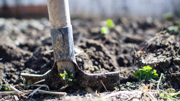 ΟΠΕΚΕΠΕ: Νέα πληρωμή 4,2 εκατ. ευρώ σε 12.713 δικαιούχους αγρότες