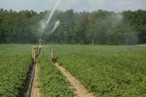 Υποχρεωτικά τα υδρόμετρα σε όλα τα χωράφια