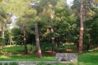 Ημέρα περιβάλλοντος στο Δάσος της Δαδιάς