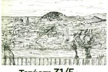 Γιορτή Ζεο-Παραδοσιακών φυτών Άβαντα