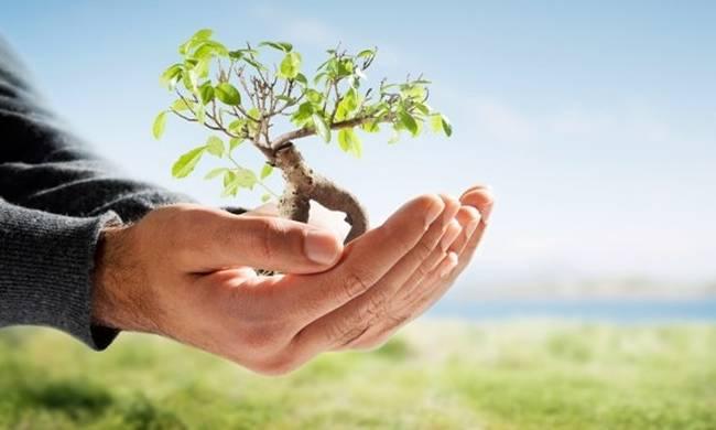 """Προστασία Περιβάλλοντος """"Προστατεύω το περιβάλλον, είναι στο χέρι μου!"""" στη Δημοτική Βιβλιοθήκη Αλεξανδρούπολης"""