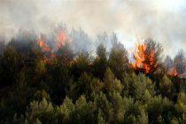 Οδηγίες της Πολιτικής Προστασίας για τις δασικές πυρκαγιές