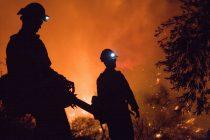 Πολύ υψηλός κίνδυνος πυρκαγιάς το Σάββατο σε Έβρο και Σαμοθράκη