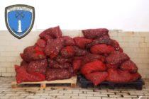 957 κιλά ακατάλληλα όστρακα κατασχέθηκαν στον Μαΐστρο