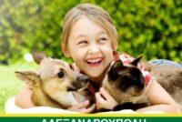 Ημερίδα για τα ζώα συντροφιάς στην Αλεξανδρούπολη