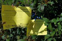 Η Αλεξανδρούπολη γέμισε ποιήματα για την Παγκόσμια Ημέρα Ποίησης!