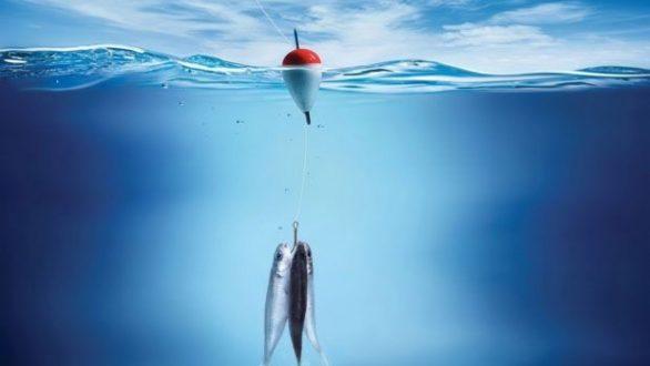 Άρση απαγόρευσης αλιείας στον Έβρο