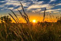 Το 2019 η δεύτερη πιο ζεστή χρονιά στον πλανήτη