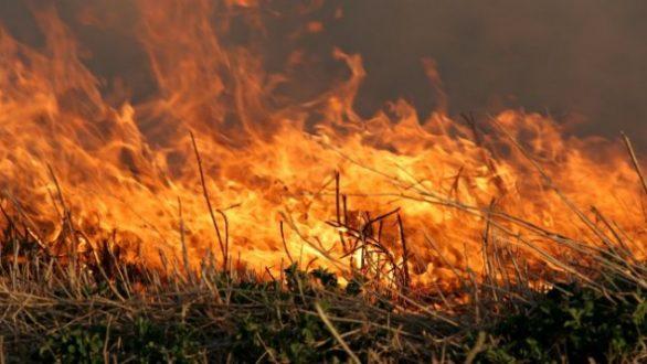 Φωτιά σε εξέλιξη στο Δορίσκο Έβρου