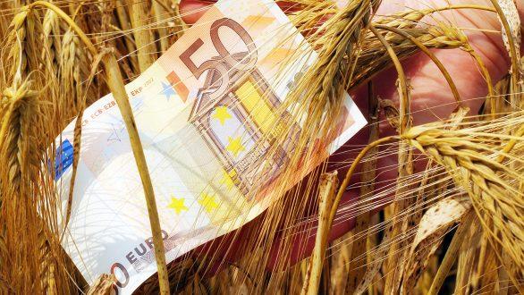 ΟΠΕΚΕΠΕ: Την Πέμπτη 20 Δεκεμβρίου οι πληρωμές της Ενιαίας Ενίσχυσης – Τι θα συμβεί με το ακατάσχετο