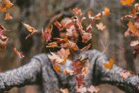 Φθινοπωρινή ισημερία 2018: Πότε μπαίνει επίσημα το φθινόπωρο