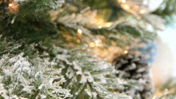 Ο πιο απλός τρόπος για να φτιάξετε μόνοι σας ένα χιονισμένο δέντρο