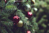 Φωταγώγηση του Χριστουγεννιάτικου δέντρου στο Θούριο Ορεστιάδας