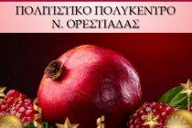 """Ορεστιάδα: Παρουσίαση του βιβλίου """"Ρόδινη ζωή"""" της Ι. Παρασχάκη"""