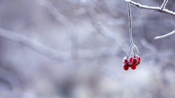 Χειμερινό ηλιοστάσιο 2020: Πότε είναι η πρώτη ημέρα του χειμώνα