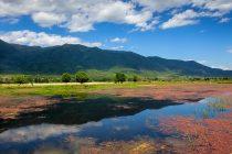 Εγκρίθηκε η σύναψη προγραμματικής σύμβασης για παρεμβάσεις στη λίμνη Κερκίνη