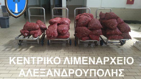 1.253 κιλά ακατάλληλα όστρακα κατασχέθηκαν στην Αλεξανδρούπολη
