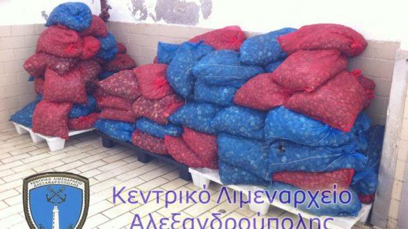 Αλεξανδρούπολη: Καταδίωξη και συλλήψεις 2 ατόμων με 1.617 κιλά ακατάλληλα όστρακα και ναρκωτικές ουσίες