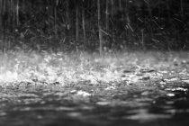 Σε κατάσταση έκτακτης ανάγκης περιοχές της Ροδόπης και της Ξάνθης