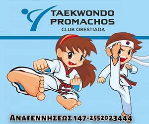 Promachos-TaeKwonDo